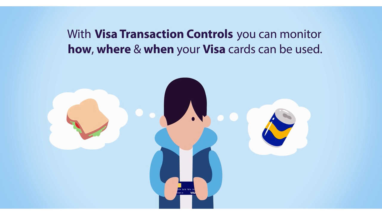 visa-transaction-controls